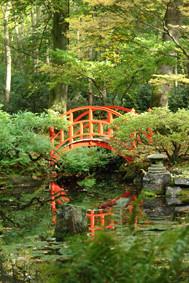 130x95 cm Japanse tuin