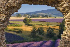 95x130 cm Gat in rots lavendel