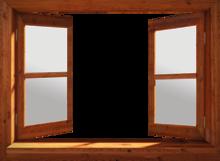 760-Eigen doorkijk open raam - bruin