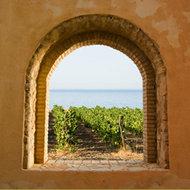 Venster op wijngaard en zee