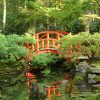 japanse tuin tuinposter