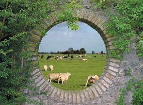 95x130 cm Geheime tuin: Hollands landschap