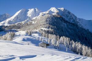 Winterlandschap Chalet