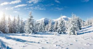 Sneeuwlandschap bomen en bergen