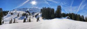 Winterlandschap bos met besneeuwde bergen