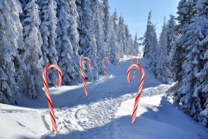 Winterlandschap bospad in sneeuw met candy canes