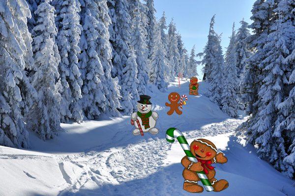 1523 Sugar & Spice kerstdorpachtergrond