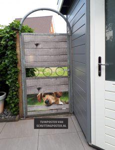 voorbeeldtuin Hond kijkt door schutting