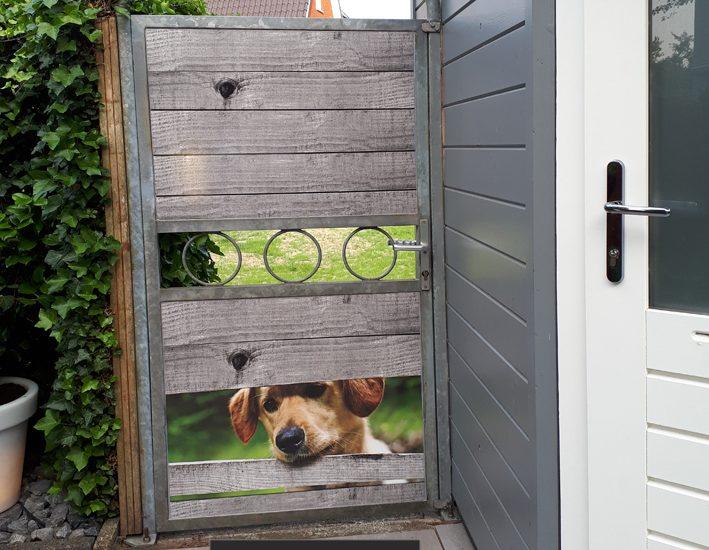 Deurposter Hond kijkt door schutting