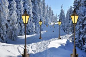 Winterlandschap bospad in sneeuw met lantaarns