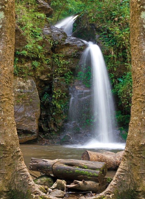 tuinposter aanbieding waterval tuinposter tussen bomen doorkijkje