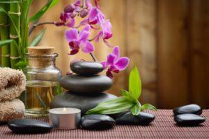 Roze orchidee met stenen