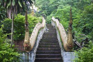 Stenen trap in jungle