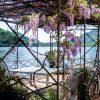 tuinposter met doorkijk terras blauwe regen meer