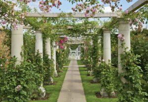Zuilengalerij met rozen