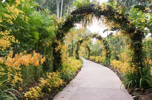 tuinposter doorkijk Bloemenboog gele bloemen