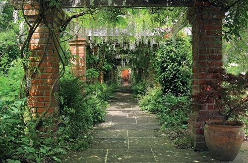 tuinposter doorkijk Begroeide laan