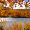 tuindoek met doorkijk herfstbos