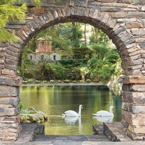 tuinposter vijver doorkijk zwanen en kasteel