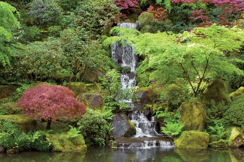 smalle tuinposter met waterval