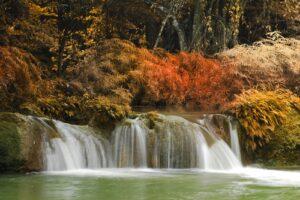 Herfstbos met waterval