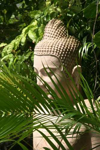 Boeddha achter palm tuinposter
