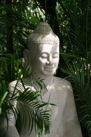 Boeddha met palm