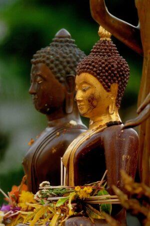 Boeddha naast elkaar