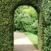 tuinposter doorkijk poort groene haag