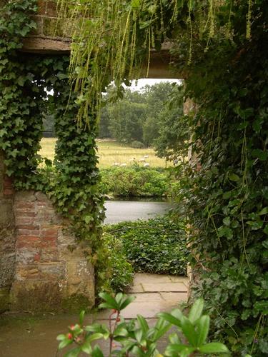 tuinposter met doorkijk begroeide muur