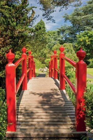 Rode Japanse brug