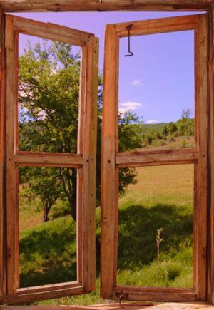 Weiland door openstaand venster