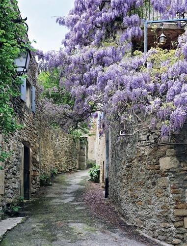 doorkijk blauwe-regen-frans-dorp