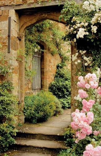 tuinposter doorkijk Rozen kasteel