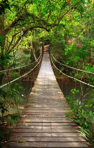 tuinposter met-landschap Hangbrug