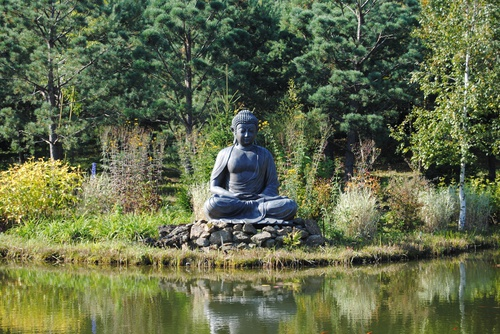 tuinposter boeddha vijver groen
