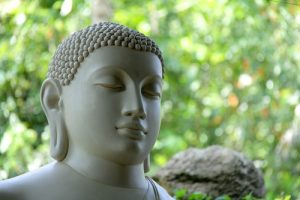 Boeddha groene achtergrond