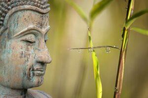 Boeddha met bamboe achtergrond