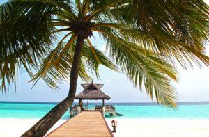Tropisch strand met steiger