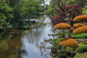 Waterval in meer met bloemen