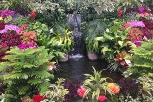 Waterval met veel bloemen