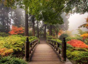 Houten Japanse brug