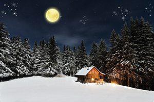 Sneeuwlandschap bij maanlicht en sneeuwvlokken