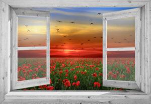 95x130 cm Openslaand wit venster: klaprozenveld