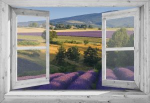 95x130 cm Openslaand wit venster: lavendel