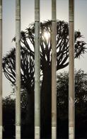 Fotolamellen - 4 lamellen 190 x 20 cm - 1 lamel (de rechtse) 190 x 17 cm