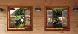 2 tuinposters op houten frame - 100x100 cm - aangepaste bevestigingsogen