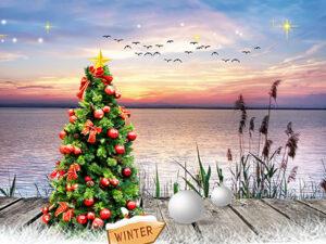 vlonder zonsondergang kerstboom