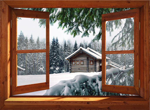 winterposter chalet in bos