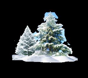 Winterposter
